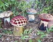 Poison Mushroom Curio\/ Pincushion