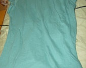 Blank Teal Tee Shirt Perfect for Screening
