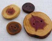 Mixed Lot of XXL and Med. buttons, exotic purple heart button and the ORIGINAL Tree Branch Buttons