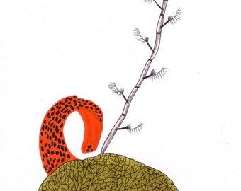 Details of a plant