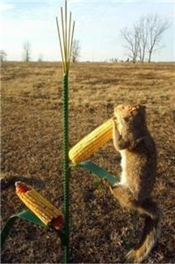 Recycled metal Iowa Corn Bird and Squirrel Feeder