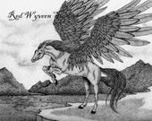 high quality print of my original pen and ink drawing pegasus winged horse by Kate Sjoberg