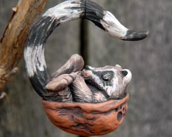 Sleeping Raccoon Walnut Ornament