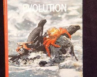 Evolution Life Book Vintage Natural History Lavishly Illustrated