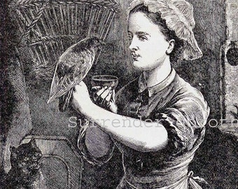 Peasant Girl Wounded Pet Pigeon 1879 Victorian Vintage Engraving Illustration To Frame