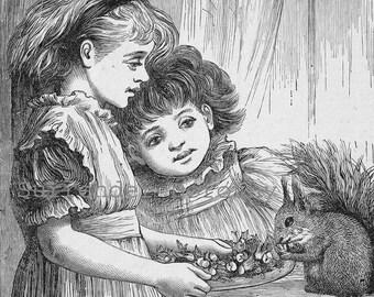 Little Nutcracker Little Girls Squirrel Vintage 1890 Pet Original Victorian Children's Engraving To Frame