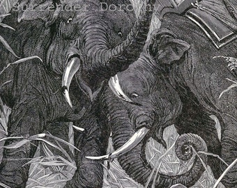 Elephant's Deadly Jungle Fight 1890 Victorian Natural History Original Antique Illustration To Frame
