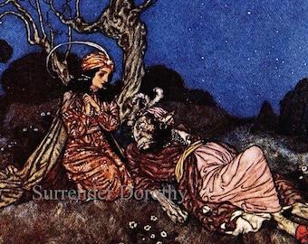 Sleeping Beauty Edmund Dulac Vintage Children's Print For Hans Christian Anderson 1910