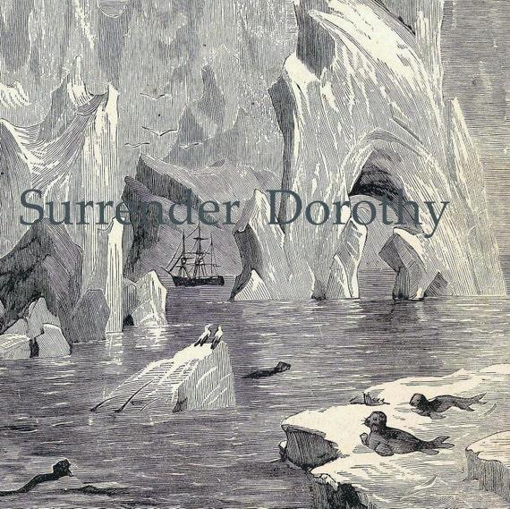 Arctic Ship Mountains Of Ice  Vintage 1892 Original  Edwadian Natural History Illustration To Frame