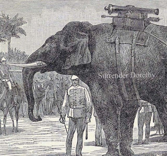 Elephants Transporting Cannons 1892  Bizarre Original Victorian Military Engraving To Frame