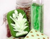 Soap - ALOE MINT handmade with Aloe and Spearmint Essential Oils