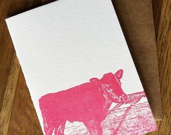 Baby Calf letterpress notecard