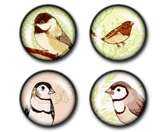 glass BIRD magnets - set of 4 fridge magnets, spring song birds finch sparrow bird watching bird art songbird, dorm decor, locker magnets