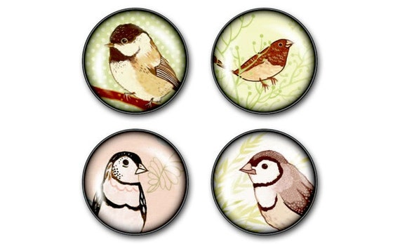 glass BIRD magnets - set of 4 fridge magnets, spring song birds finch sparrow birdwatching bird art songbird