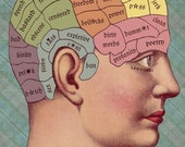 A Clean Mind . . . phrenology style