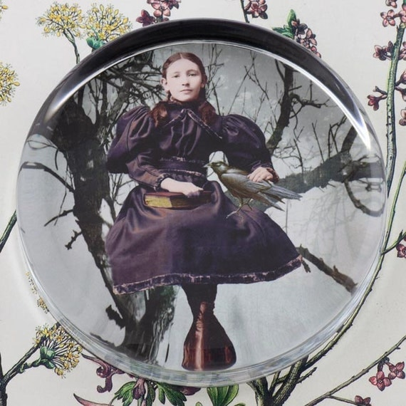 The Girl and the Raven Glass Round Paperweight tartx