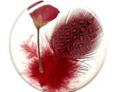 Sizzlin Hot Cherry Red Pocket Mirror