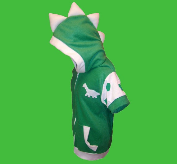 Dinosaur hoodie with spikes