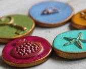 Five Colorful Magnets- beautiful texture of pomegrante,starfish,sparrow,wheat and key
