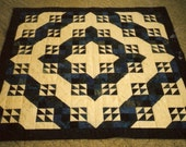 Gorgeous Blue and White quilted Wall Hanging