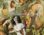 Betsy The Snail Wrangler 5x7 Collage Print