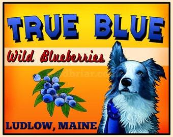 Border Collie Blue Merle Crate Label Signed Print 8x10