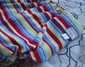 Bright Stripes Fitted Diaper - Large