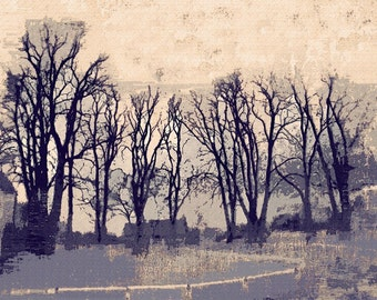 Winter Trees around the village green under a cold pink winter sky Hovingham North Yorkshire England limited edition digital print