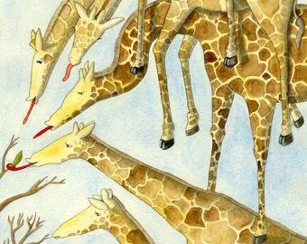 Tower of Giraffes fine art print