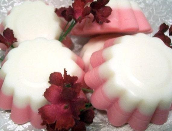 Highly Scented Wax Tart/melts - Set of 4 - Raspberry Summer