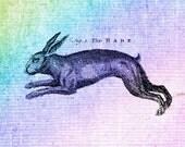 PIF - Spring 2012 Rabbit Hare Desktop Digital Wallpaper/Screensaver
