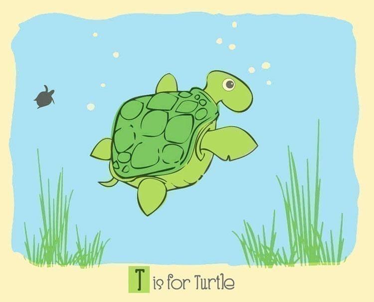 T Is For Turtle Screenprint Turtle Nursery Print Alphabet