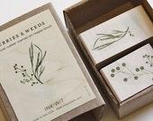 Berries & Weeds Stamp Set