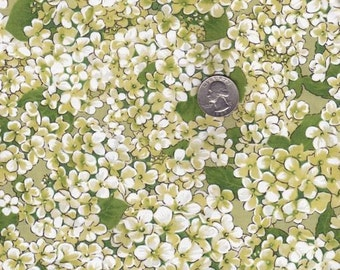 Half yard - Morning Garden in Apple - Michael Miller cotton quilt fabric
