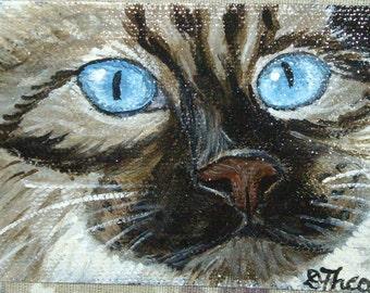 Birman Cat Aceo Original Mini Painting Portrait 3.5 x 2.5 OOAK SALE
