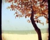 Autumn Photograph - Beach Photograph - Michigan Photography - Burnt Orange and Blue- Original Signed Photograph