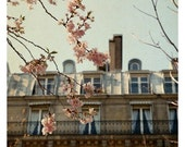 Paris Photograph - French Photography - Springtime in Paris - Paris- Blooming- Original Fine Art Photograph - Cherry Blossom Art - Alicia