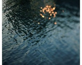 Water Photograph - Nature Photography - Sparkle - Light - Sunshine - Summer - Fine Art Photograph- Citrine - Michigan - Alicia Bock