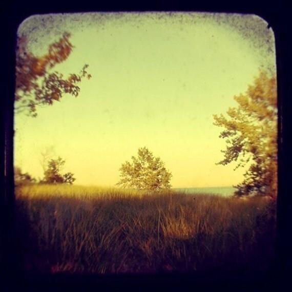 where you can breathe- orignial signed fine art photograph- alicia bock