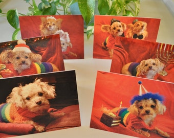 Gay Pride Greeting Card - You choose 5