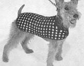 1950 Dog Sweater Instant Download Vintage Knitting Pattern PDF 322