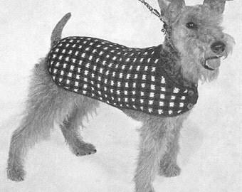 1950 Dog Sweater Instant Download Vintage Knitting Pattern PDF 322