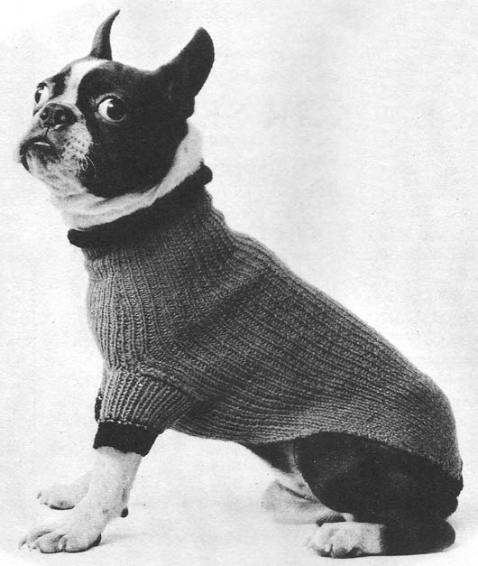 Knitting Pattern Pug Dog Sweater : 1955 Turtle-Neck Dog Sweater Vintage Knitting Pattern Instant