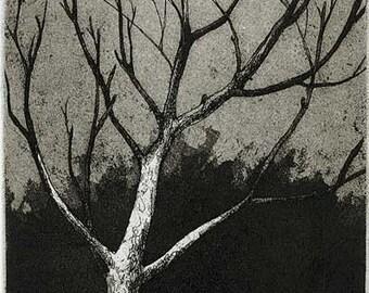 Winter - acid line etching and aquatint