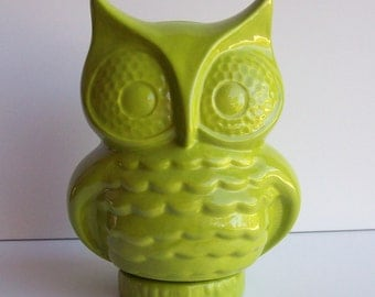 Owl Bank Vintage Design in Apple Green Ceramic Piggy Bank Owl Bird Ornament Great Housewarming Gift