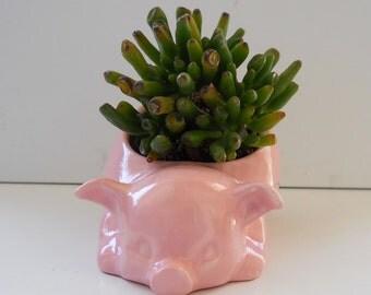 Ceramic 80s Pig Planter, Salt Pig, Vintage Design Cotton Candy Pink Succulent Pot Cactus Planter Pink Kitchen Decor Piggy Pot Fruitflypie