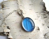 Real Butterfly Wing Glass Necklace, oval blue morpho