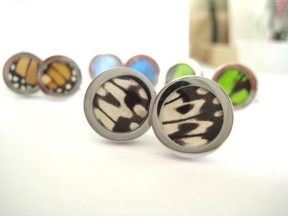 Real Butterfly Wing Cuff Links - fly away with me, black and white