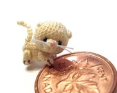 a tiny kitten crocheted from thread named sugar