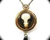 Steampunk Genuine Bird Skull Necklace OSSUARY RELIC with Feathers and Antique Watch Gear - Wearable Work of Art Only from Nouveau Motley